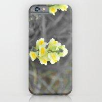 snap! iPhone 6 Slim Case