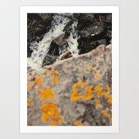 Colorado rock, stream Art Print