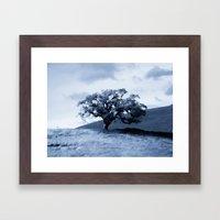 Vallecitos Road Oak Tree 005 Framed Art Print