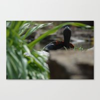 hello  Canvas Print