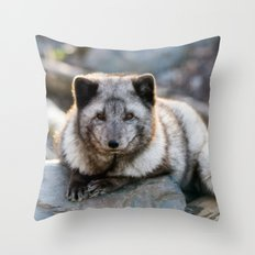Vulpes Lagopus Throw Pillow