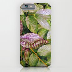 leaves evolved 2 iPhone 6s Slim Case
