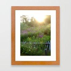 August coming undone Framed Art Print
