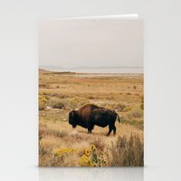 Bison Bull On Antelope I… Stationery Cards