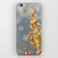 September iPhone & iPod Skin