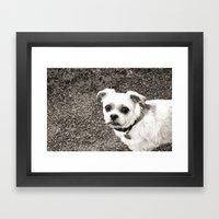 Molly Black And White Framed Art Print