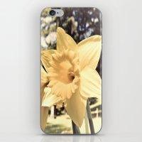 Cemetery beauty iPhone & iPod Skin
