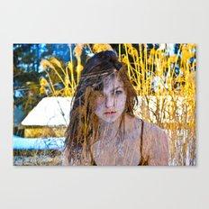 zane1color  Canvas Print