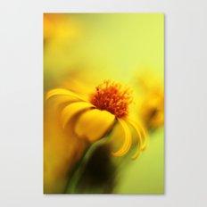 Bring Me Sunshine Canvas Print