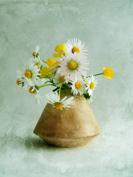 Daisies and Buttercups Art Print