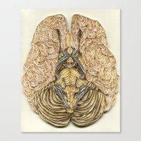 Paper Filigree Brain Canvas Print