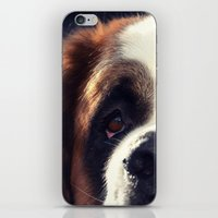 Happiness is My Dog iPhone & iPod Skin