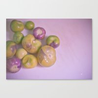 Canvas Print featuring Tomatillo by Jaime Lynn Photography