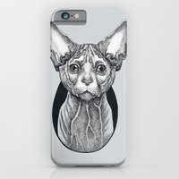 iPhone Cases featuring Sphynx cat by SilviaGancheva