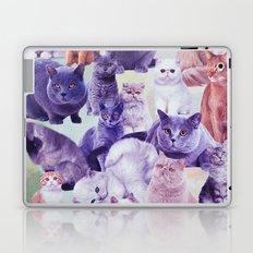 cats portrait Laptop & iPad Skin