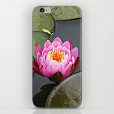 Pink Lilly iPhone & iPod Skin