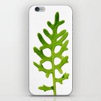 green velvet I iPhone & iPod Skin