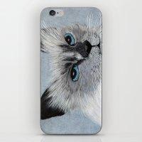 Siamese Cat iPhone & iPod Skin