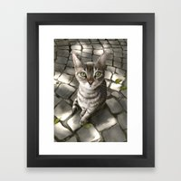 A Cat That I Once Knew Framed Art Print