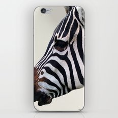 Zebra Love iPhone & iPod Skin