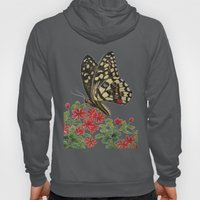 Chequered swallowtail  Hoody