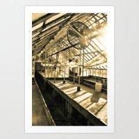 The Greenhouse Art Print