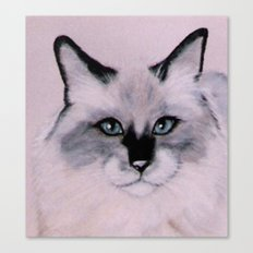 Birman Cat painting Canvas Print