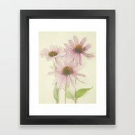 Framed Art Print featuring Pink Flower by Pure Nature Photos