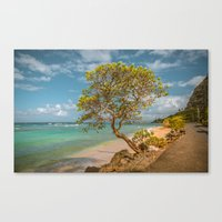 Paradise Living Canvas Print