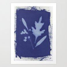Cyanotype Flower Two Art Print