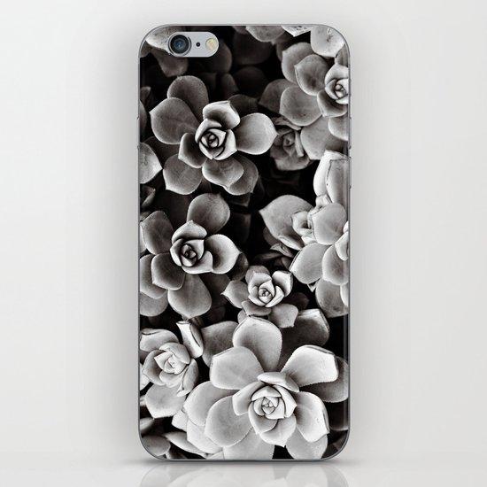 Sweetheart Succulents iPhone & iPod Skin
