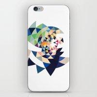 Datadoodle 22 iPhone & iPod Skin