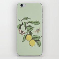 Lemons in Spring iPhone & iPod Skin