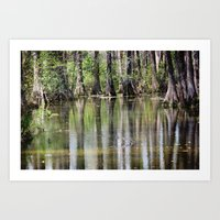 Cypress Mirror Art Print
