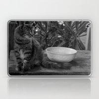 Feral Cat Laptop & iPad Skin