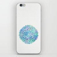 Petal Burst #8 iPhone & iPod Skin