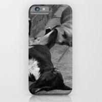 Greek Dogs iPhone 6 Slim Case