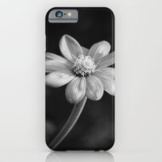And In My Garden Angels Grow iPhone 6 Slim Case