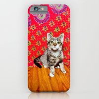 iPhone & iPod Case featuring Babe by Shane McCormick
