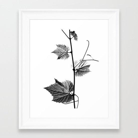 wine leaf abstract III Framed Art Print