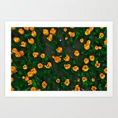 New York City Florals Art Print