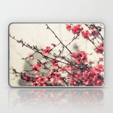 Printemps Rose Laptop & iPad Skin
