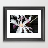 Flower 1 Framed Art Print