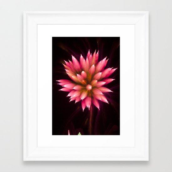 Efflorescence 2 Framed Art Print