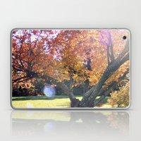 Autumn's Leaves Laptop & iPad Skin