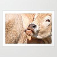 Golden Cow Art Print