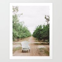 Chair In The Orchard Art Print