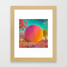 GYUMBALL (everyday 05.26.16) Framed Art Print