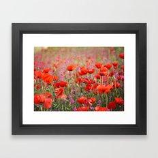Poppies in Spring Framed Art Print