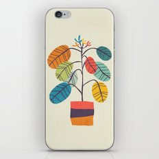 Potted plant 2 iPhone & iPod Skin